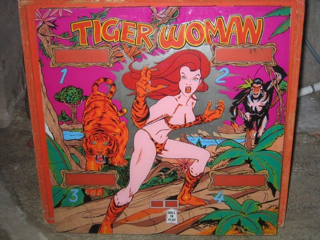 Tiger Woman Pinball Mods