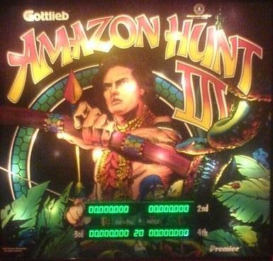 Amazon Hunt III Pinball Mods